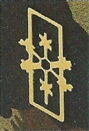 Ranks, badges, patches, epaulets of the Swiss Armed Forces - Page 9 Wetter10