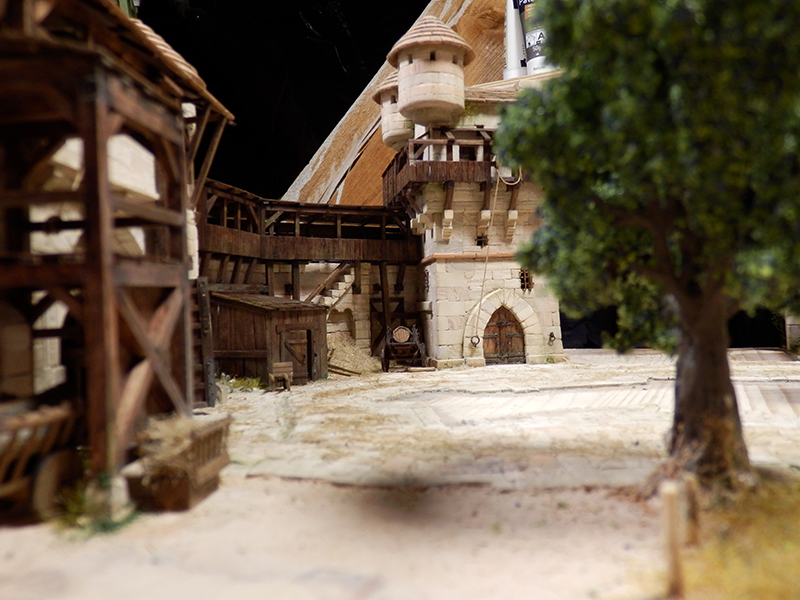 Village médiéval fortifié (2) - Page 9 P2160019