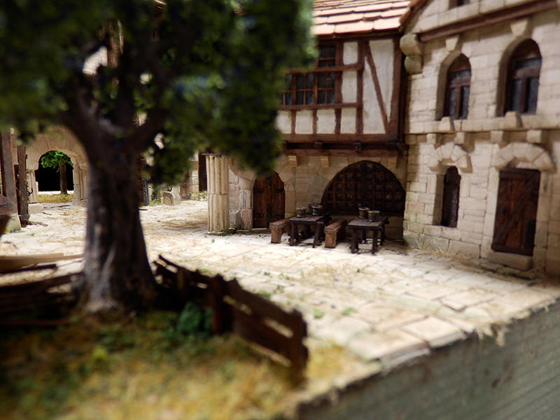 Village médiéval fortifié (2) - Page 9 P2170019