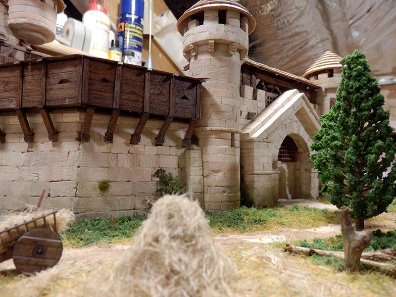 Village médiéval fortifié (2) - Page 10 P2210011