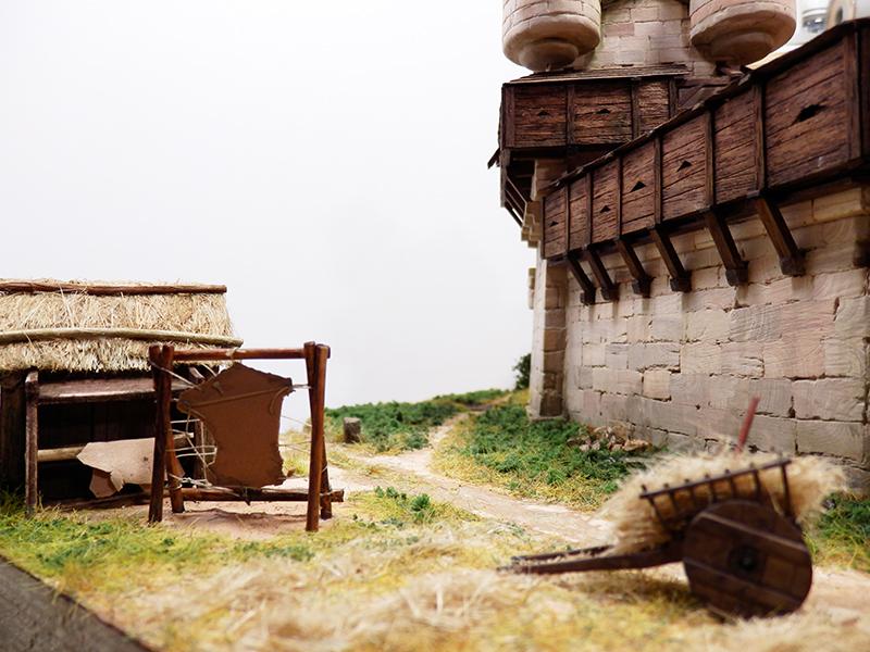Village médiéval fortifié (2) - Page 10 P2210013