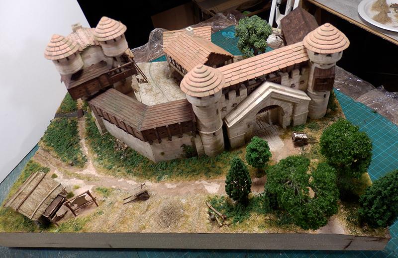 Village médiéval fortifié (2) - Page 10 P2210016