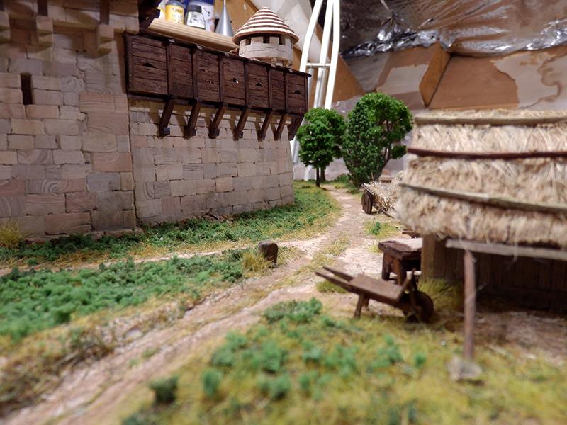 Village médiéval fortifié (2) - Page 10 P2210017
