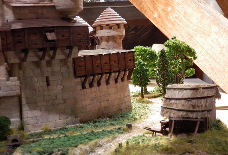 Village médiéval fortifié (2) - Page 10 P2210020
