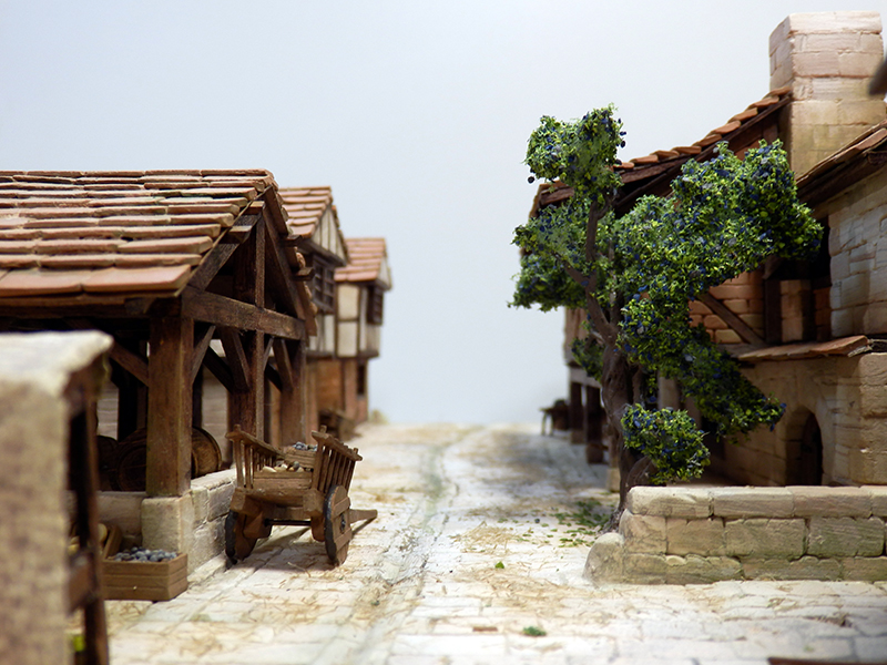 Village médiéval fortifié (2) - Page 10 P2210031