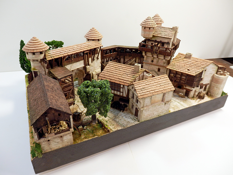Village médiéval fortifié (2) - Page 10 P2210034