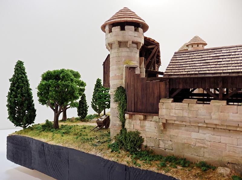 Village médiéval fortifié (2) - Page 10 P2210036