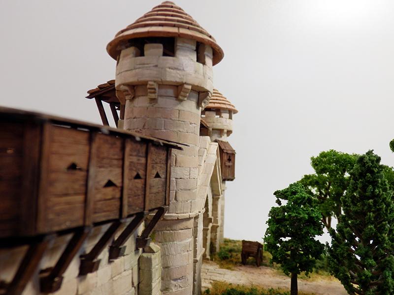 Village médiéval fortifié (2) - Page 10 P2210061
