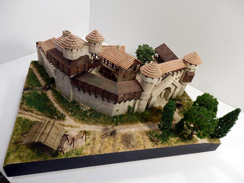 Village médiéval fortifié (2) - Page 10 P2210063
