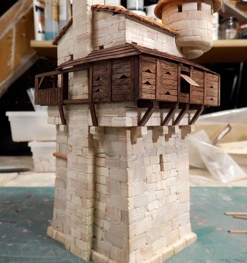 Village médiéval fortifié (1) - Page 16 P5030023