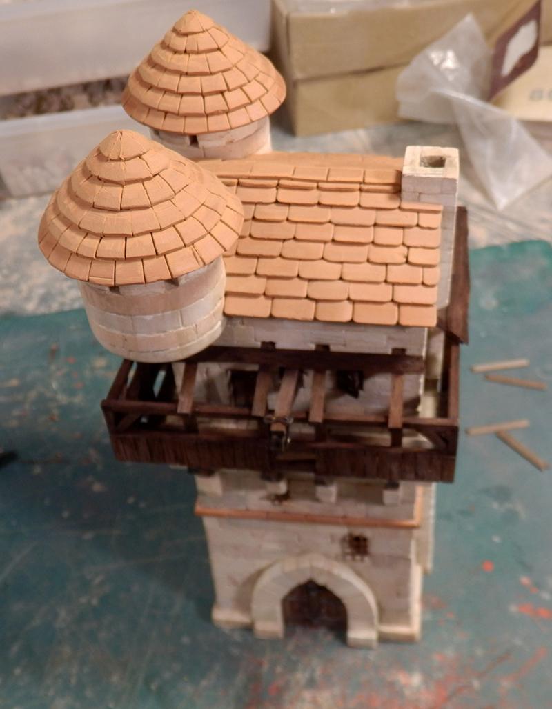 Village médiéval fortifié (1) - Page 16 P5030025