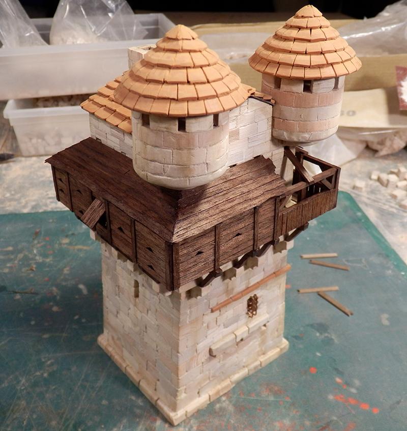 Village médiéval fortifié (1) - Page 16 P5030030