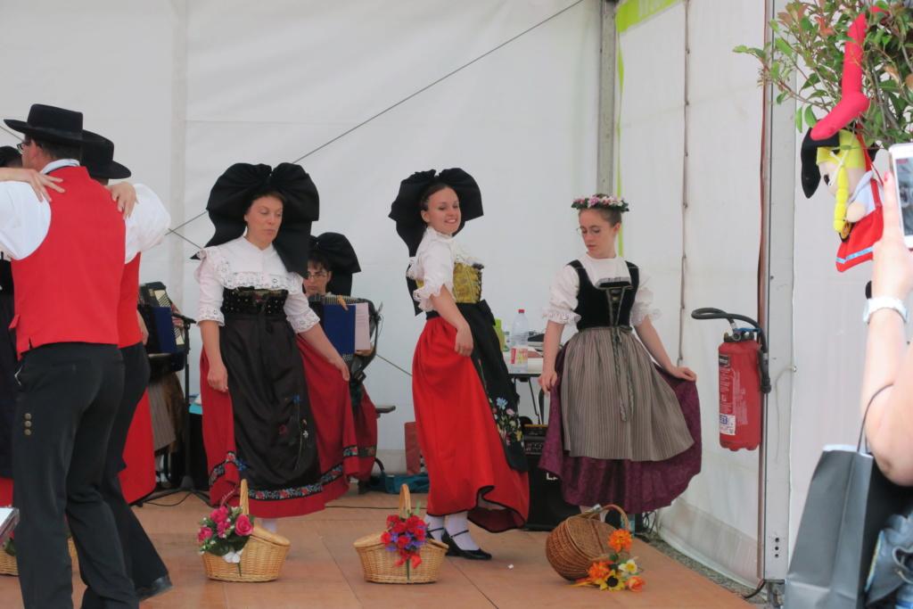 Photos du rassemblement Alsace 2019 Virf_226