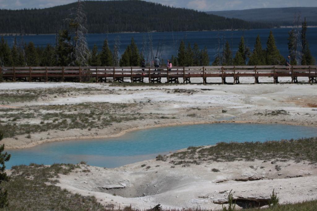 Séjour dans le parc américain de Yellowstone en juin 2018 27_can10