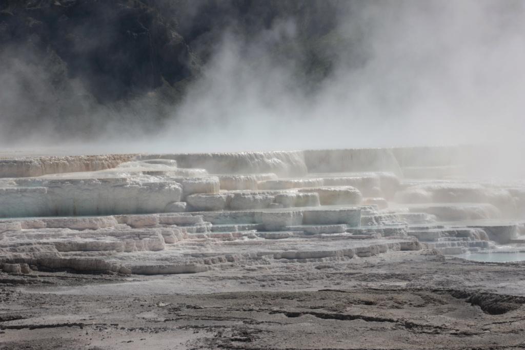 Séjour dans le parc américain de Yellowstone en juin 2018 39_can10