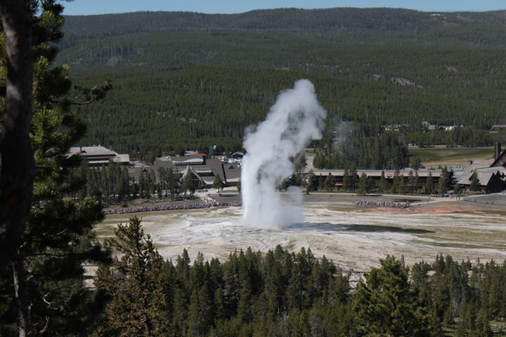 Séjour dans le parc américain de Yellowstone en juin 2018 Img_7310