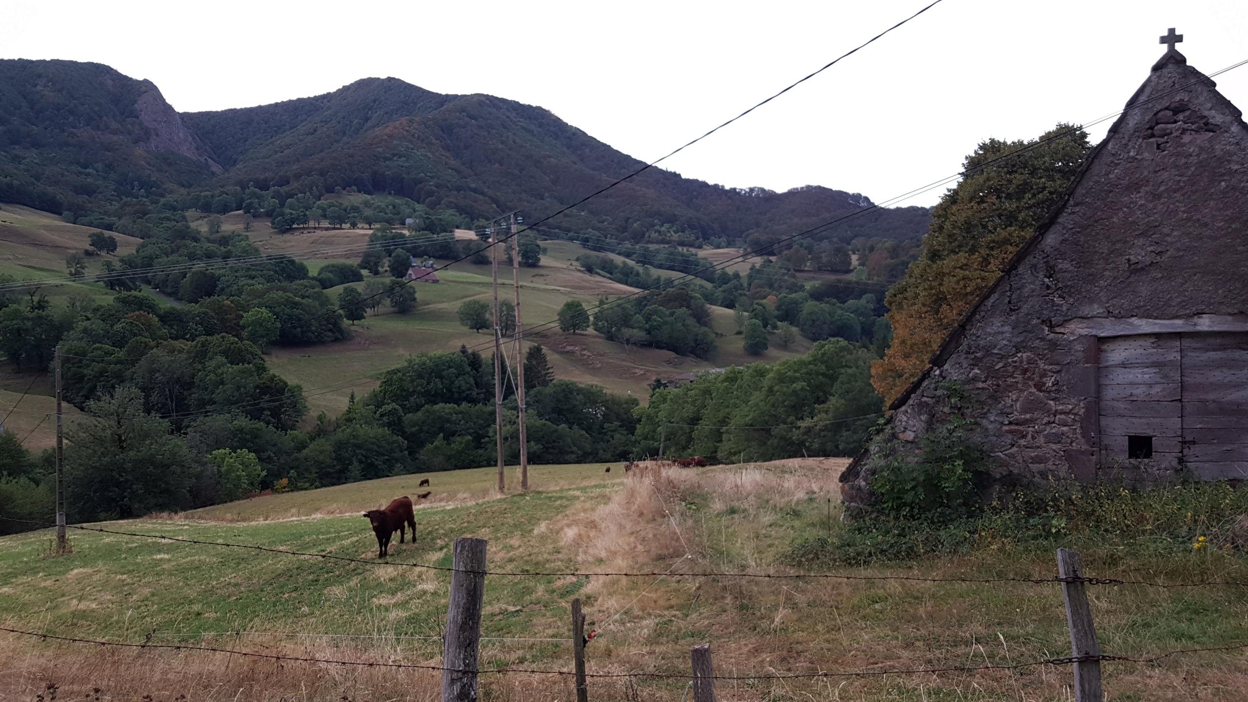 Auvergne - Page 4 20190935