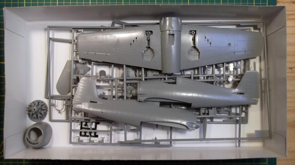 Hasegawa - F6F3 Hellcat - 1/48 Dscf8214