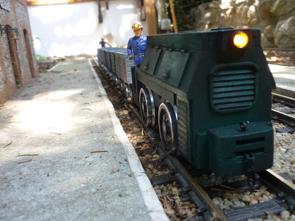 Un tren miner - Página 2 P1160220