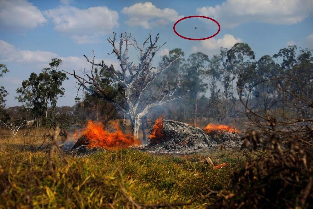 INCENDIO DEL AMAZONAS...  5d5f0d10