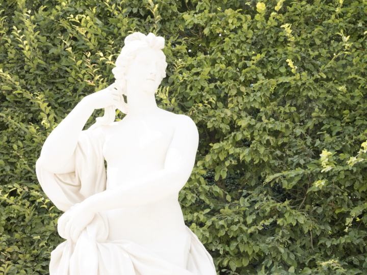 Exposition :  Versailles visible / invisible Zducre14