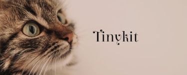 The Winds of WindClan Tinyki11