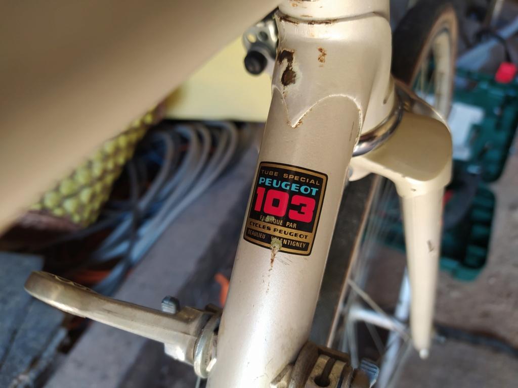 Peugeot nacré à identifier svp Img_2057