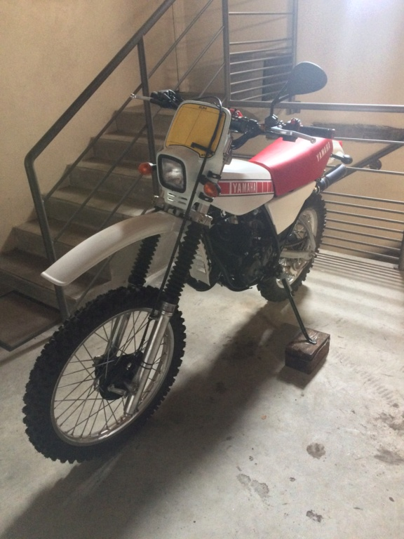 Enfin ma DTMX 125.  Img_4011