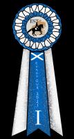 Effin päiväkirja - Sivu 5 Skotla10