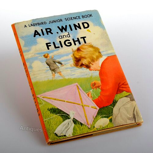 Air, Wind and Flight 310