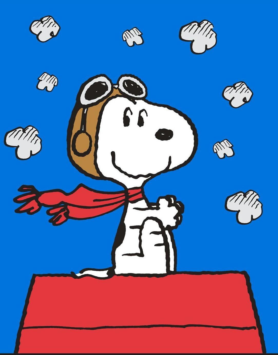 COXADOODLEDO Snoopy10