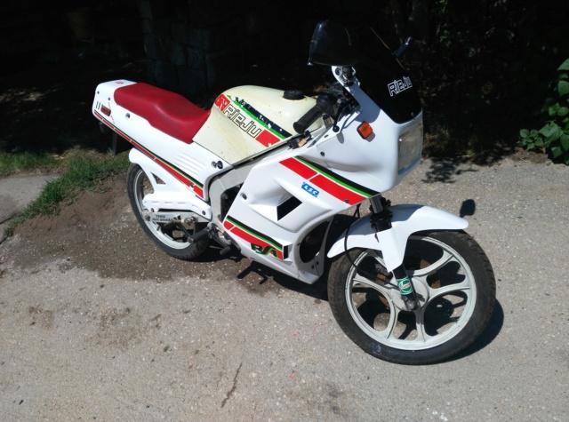 Rieju RS1 RV4 1991 Img_2014