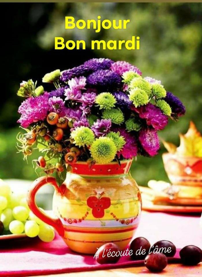 Bonjour et Bonsoir Août  - Page 2 11715324