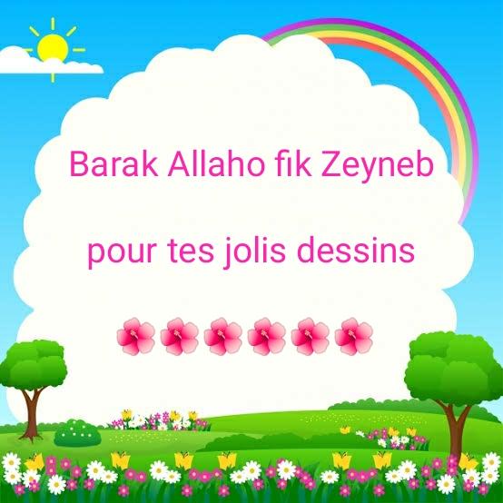 zeyneb2016 Img_2012