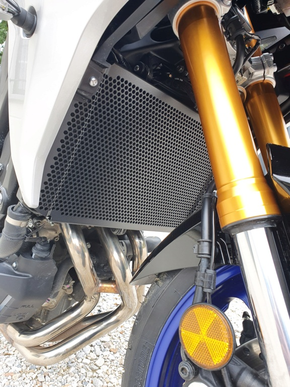 Grille protection radiateur - Page 7 20200923