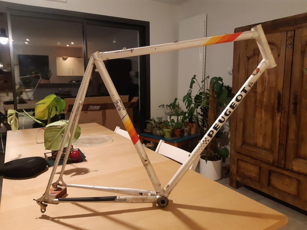 PSV10 L 1984 20210411