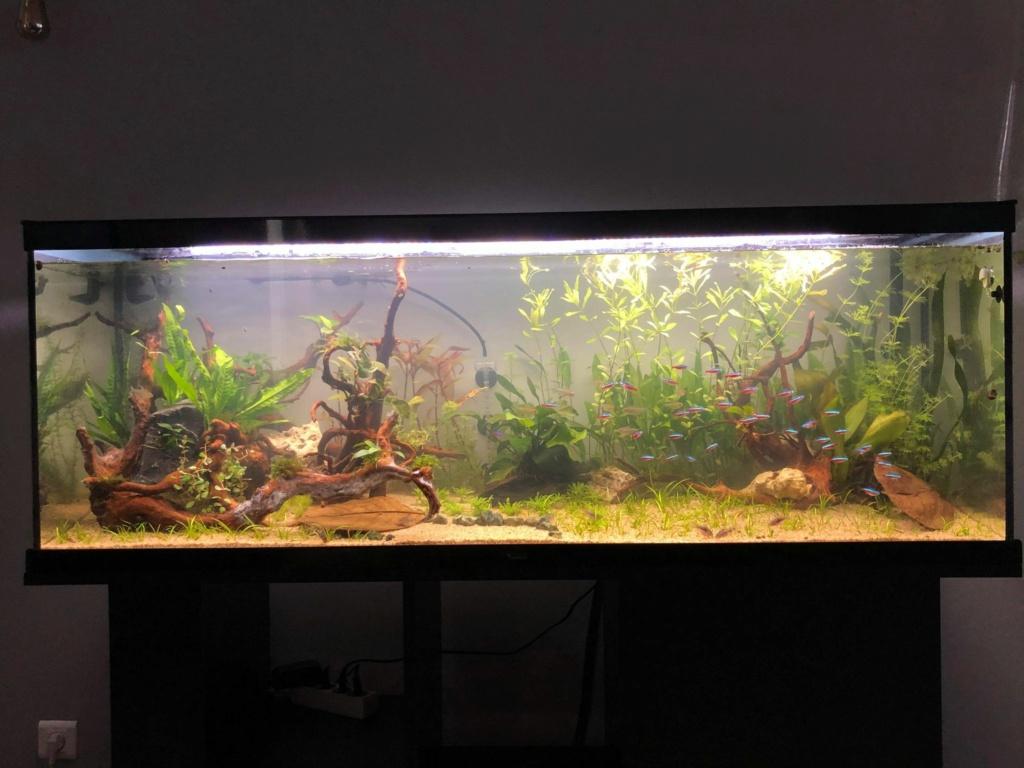 Bac Amazonien 335L brut 20617110