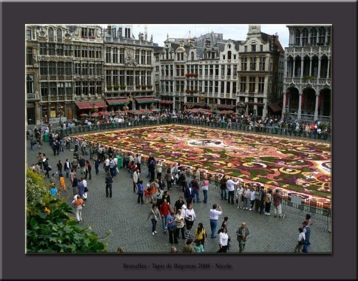 Tapis de fleurs - Bruxelles 2008 Tapis010