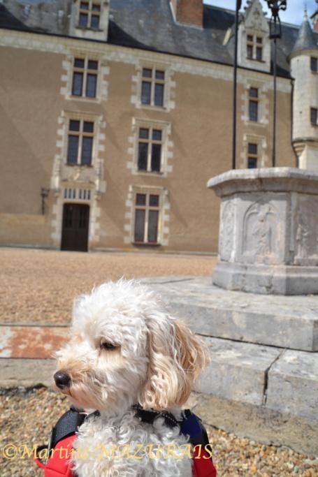 Céré la Ronde – Château de Montpoupon 01-05-42