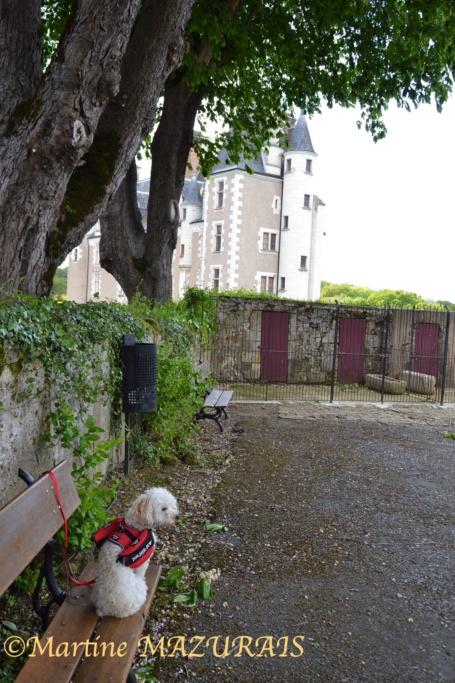 Céré la Ronde – Château de Montpoupon 01-05-43