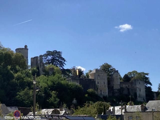 Vendôme - Le parc du château 01_ven10
