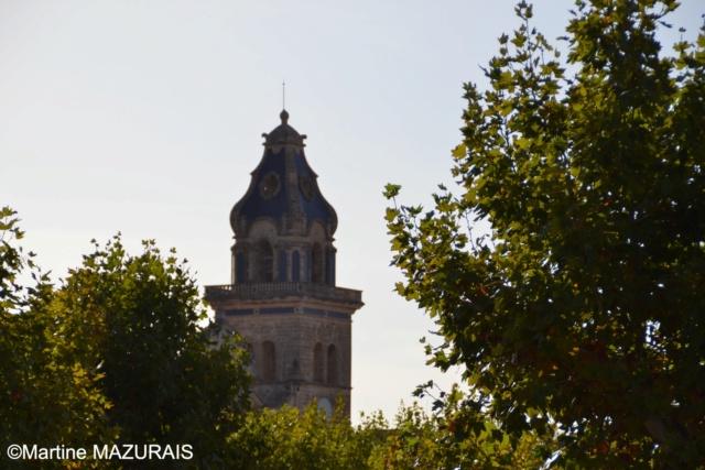 Santa Maria del Cami 035_sa10