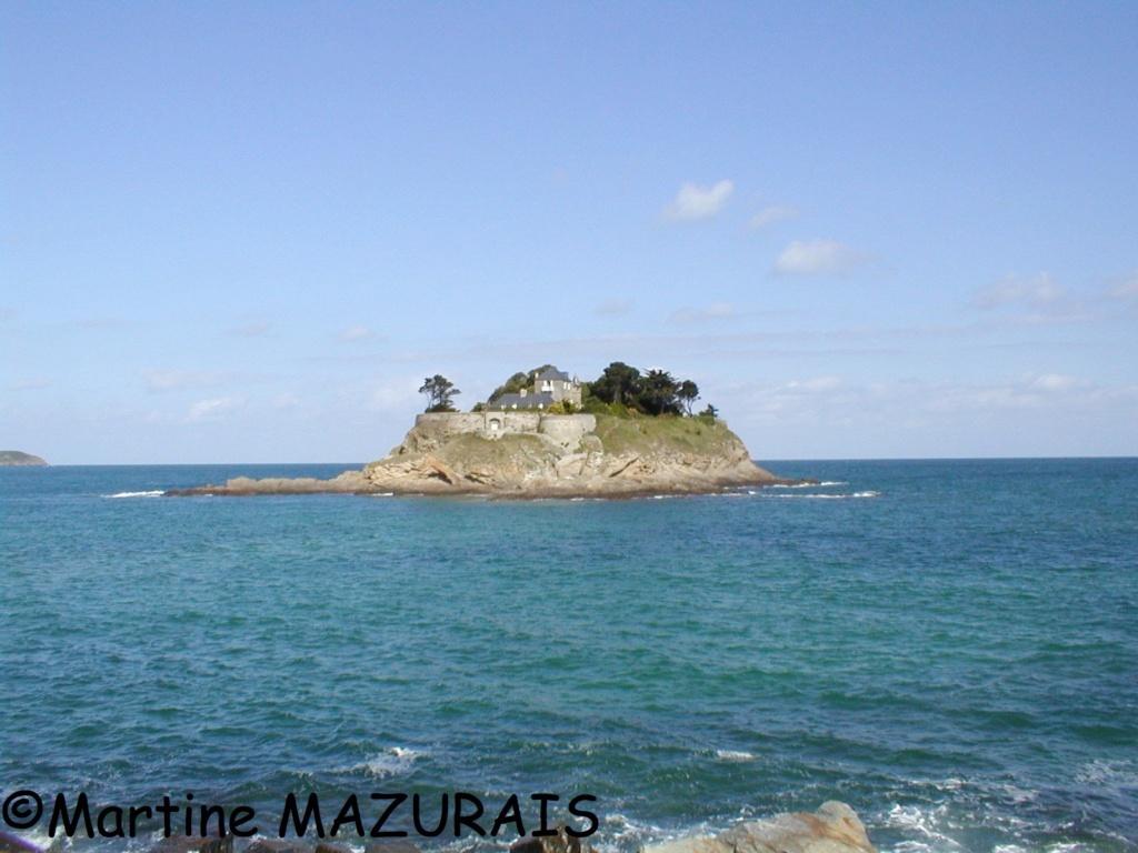 Saint-Coulomb - Fort du Guesclin 04e2a-10