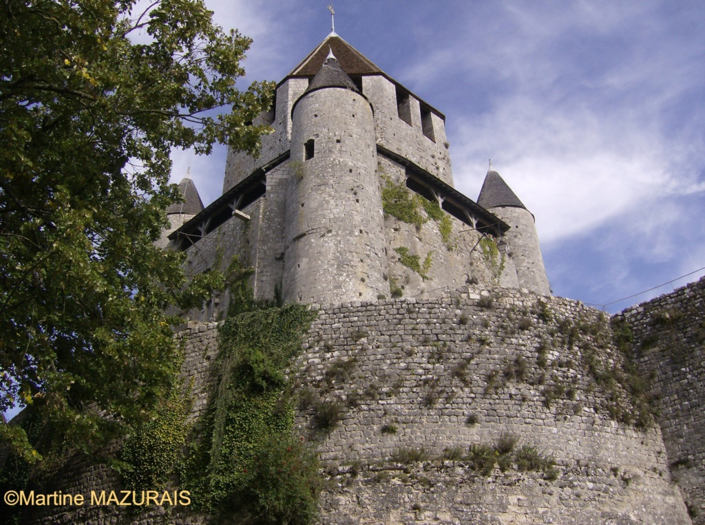 Provins – Tour César 08-10-10