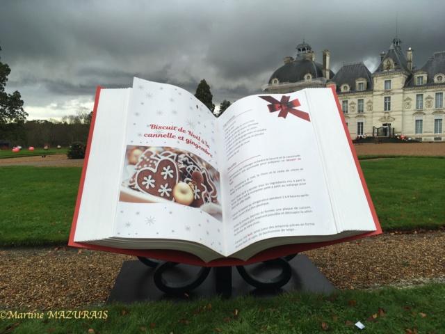Cheverny - Le château 08-12-16