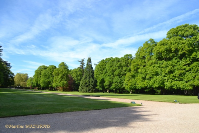 Cheverny - Le château 10-05-69