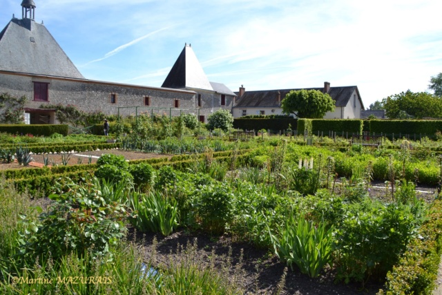 Cheverny - Le château 10-05101