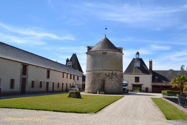 Cheverny - Le château 10-05117