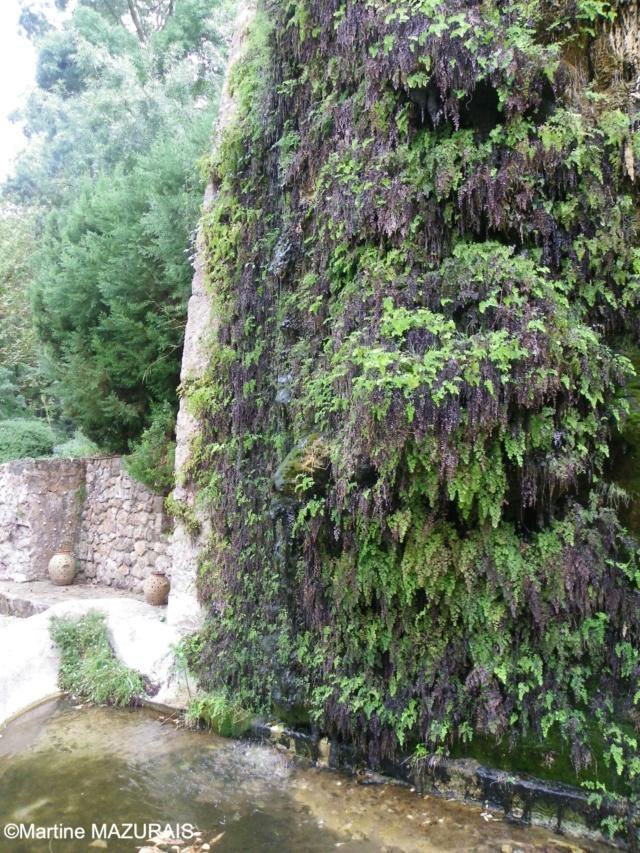 Esporles – La Granja 12-10200