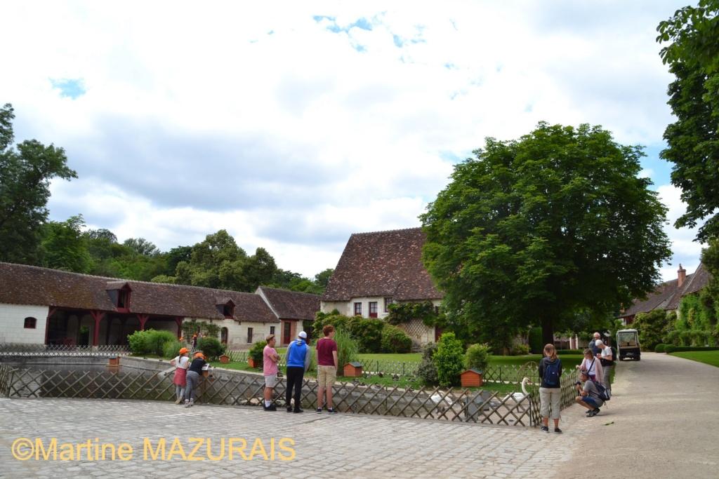 Chenonceaux - Le château de Chenonceau 14-06-71